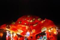 Ozora Festival 2011